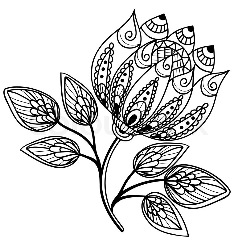 Beautiful black and white flower hand drawing stock vector colourbox