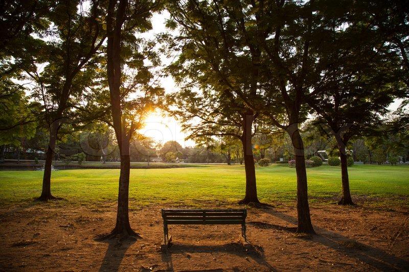 Kết quả hình ảnh cho bench in the park