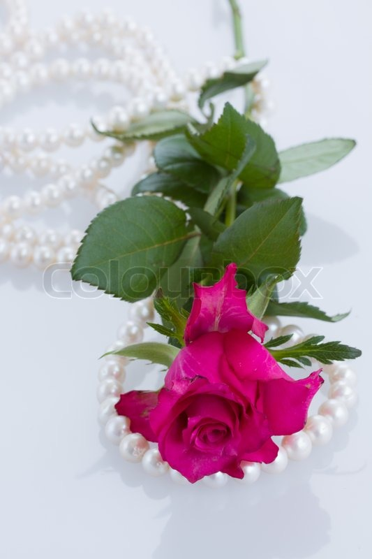 One pink rose with pearls stock photo colourbox mightylinksfo