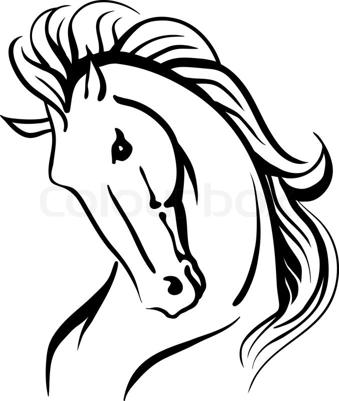 stylised drawing of a wild horse stock vector colourbox