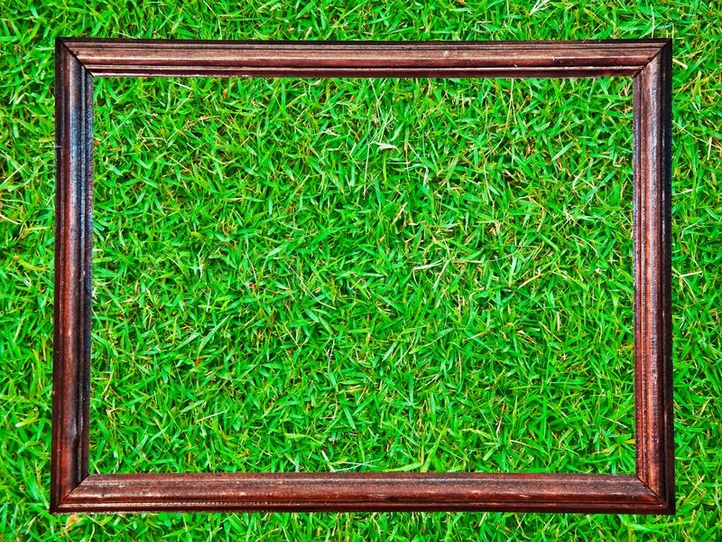 The Vintage wooden frame isolated on green grass background, stock photo