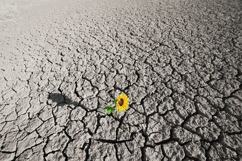 Desert Definition and Characteristics