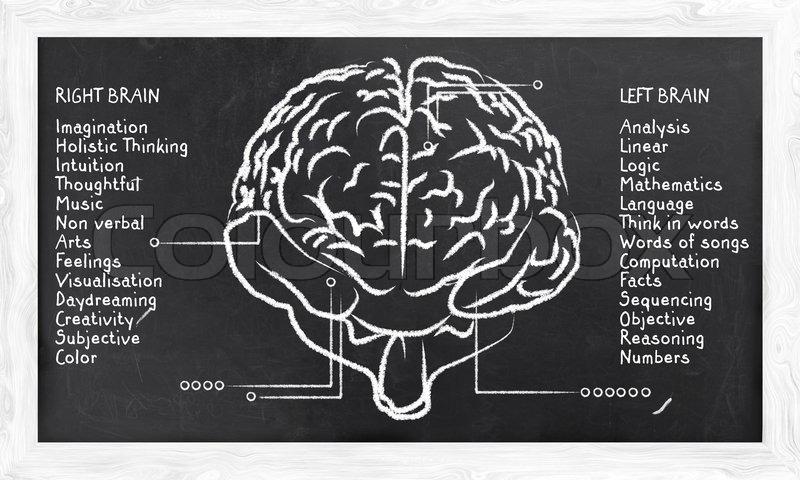 venstre hjernehalvdel