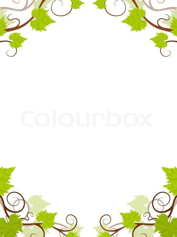 Weinreben Rahmen   Vektorgrafik   Colourbox