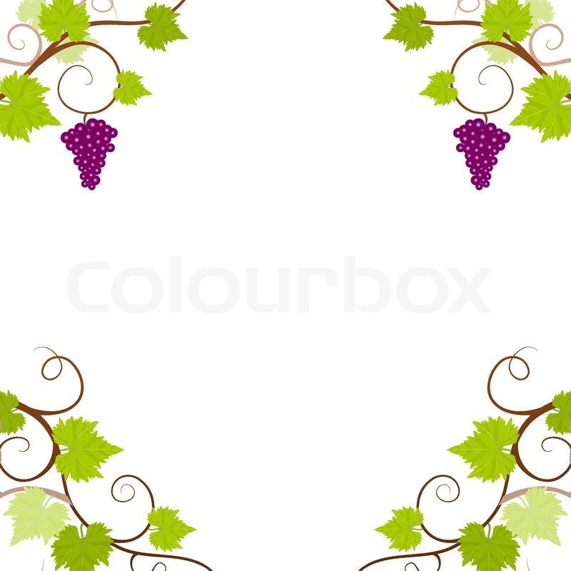 Weinreben Rahmen | Vektorgrafik | Colourbox