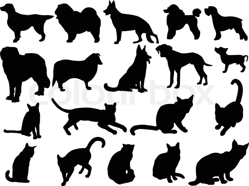 Cat And Dogeps Stock Vector Colourbox