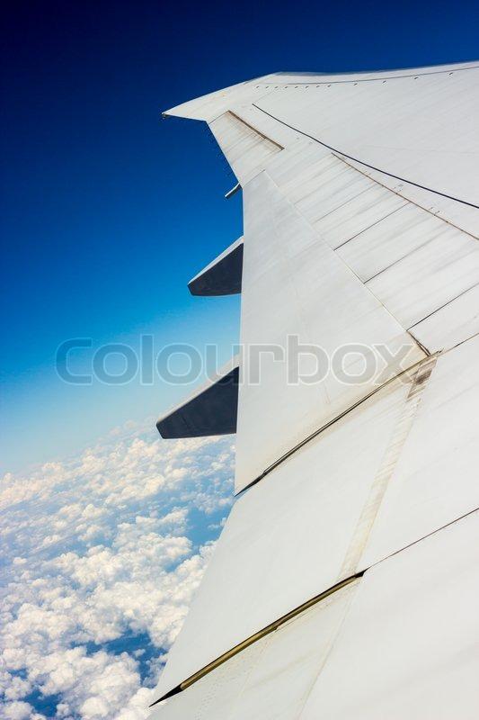 plane journey essay