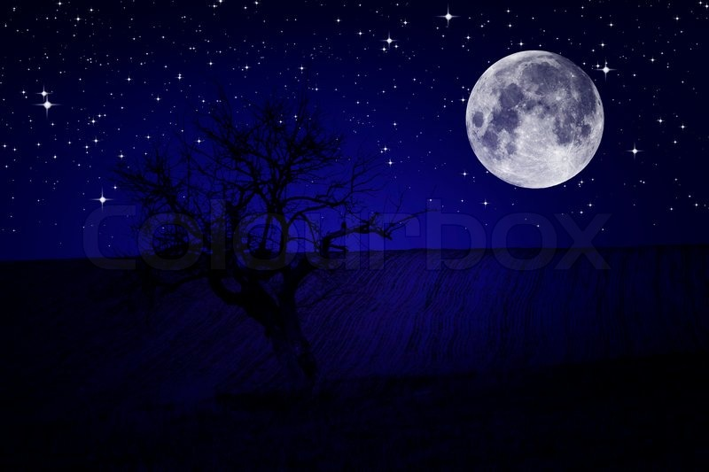 Night sky stars scenery stock photo colourbox thecheapjerseys Image collections