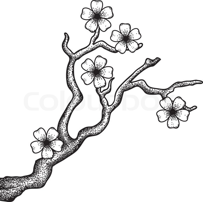 illustration of a blossoming cherry tree branch in a retro
