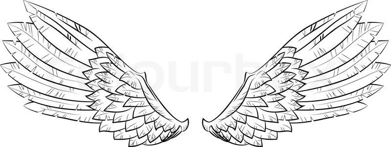 vektor wings  stockvektor  colourbox