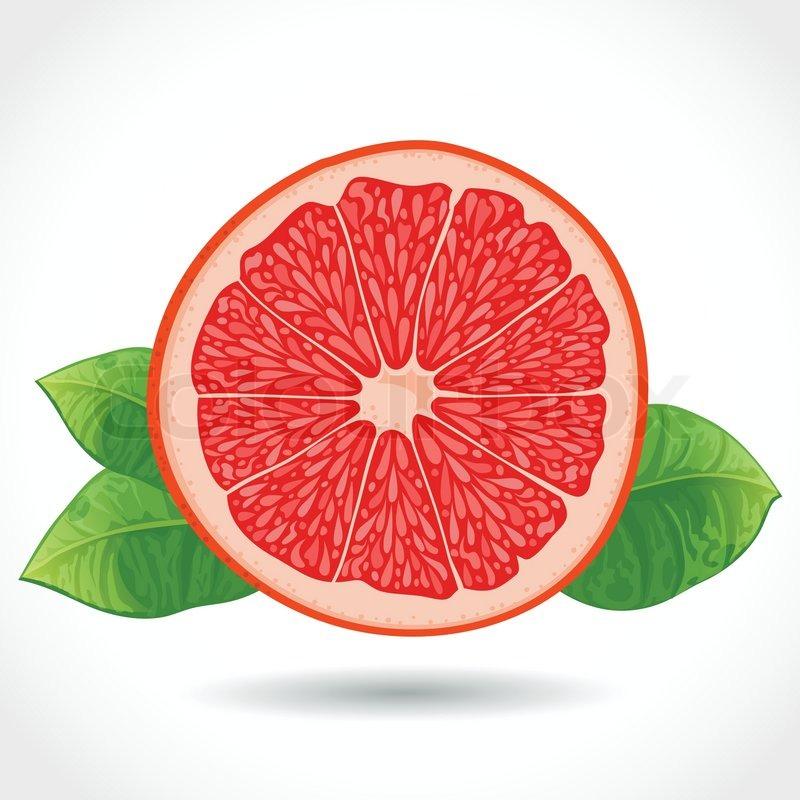 Grapefruit slice clipart