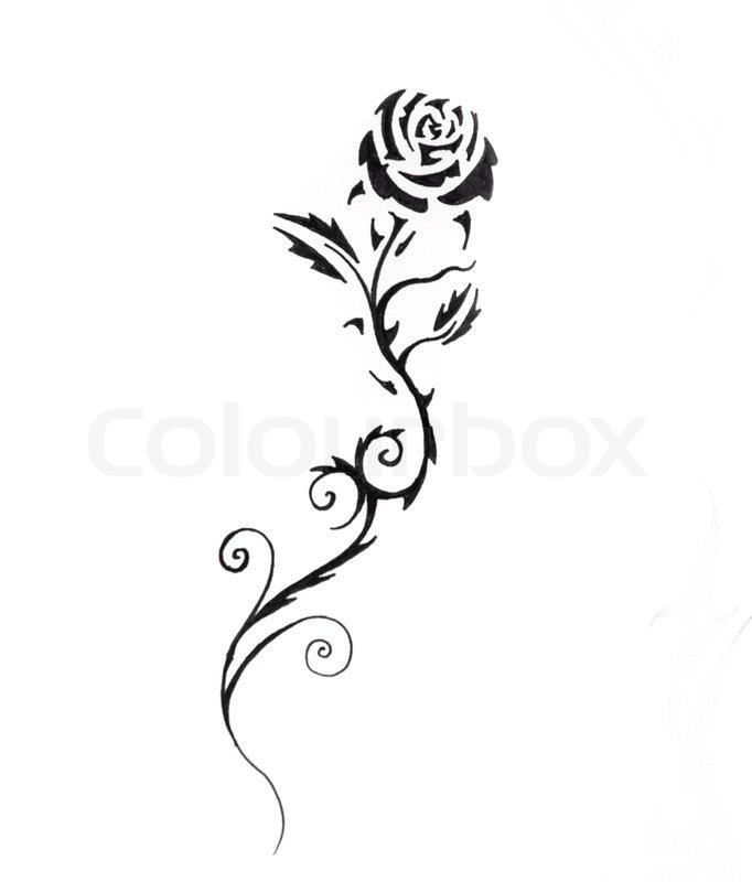 skizze der tattoo kunst rose schwarz stockfoto colourbox. Black Bedroom Furniture Sets. Home Design Ideas
