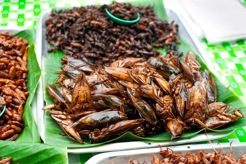 thai essen am markt fried insekten stockfoto colourbox. Black Bedroom Furniture Sets. Home Design Ideas