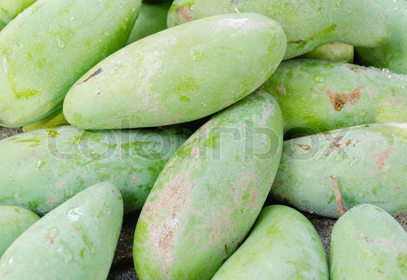 Stock image of 'Close up of green mangoes fruit'