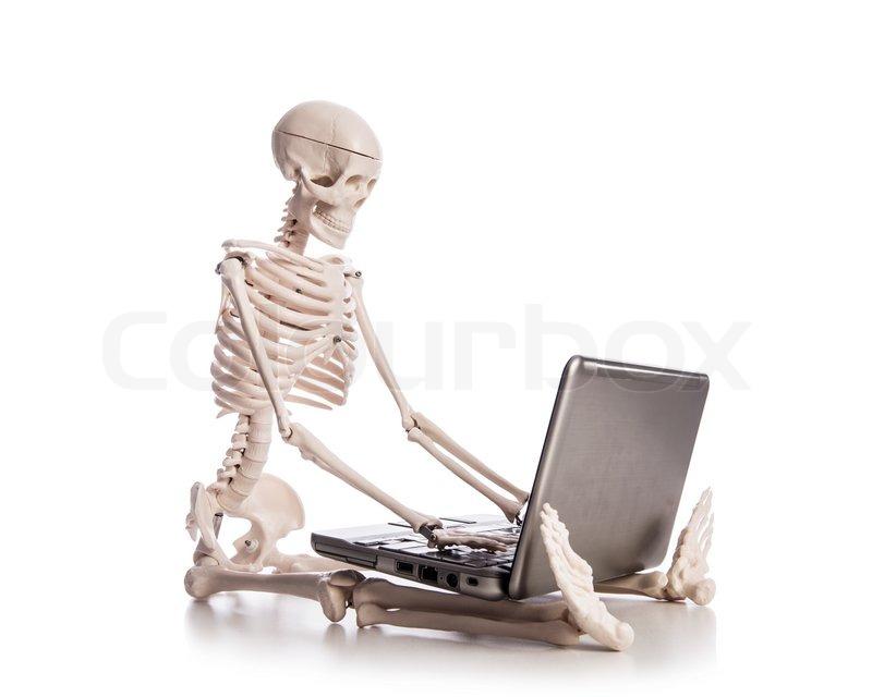 6550078-skeleton-working-on-laptop.jpg