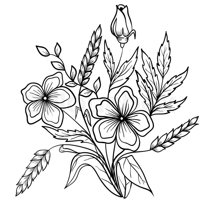 Arrangement Of Flowers Black And White Outline Drawing Lines