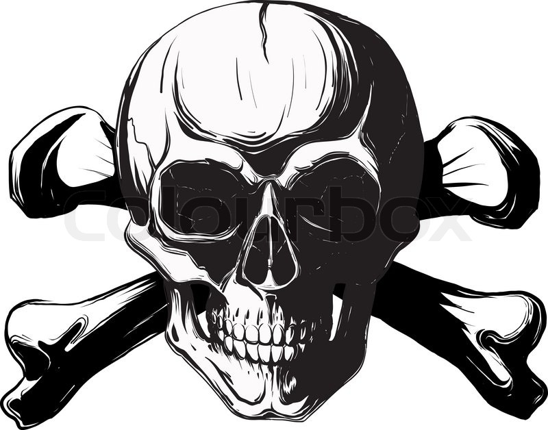 Human Skull And Bones Pirate Symbol Isolated On A White Background
