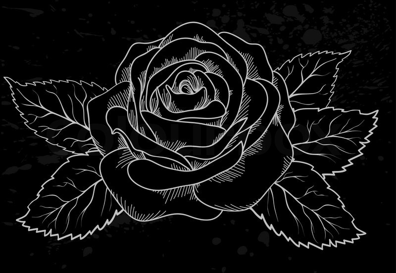 sch ne wei e rose umriss mit grauen flecken auf einem schwarzen hintergrund vektorgrafik. Black Bedroom Furniture Sets. Home Design Ideas