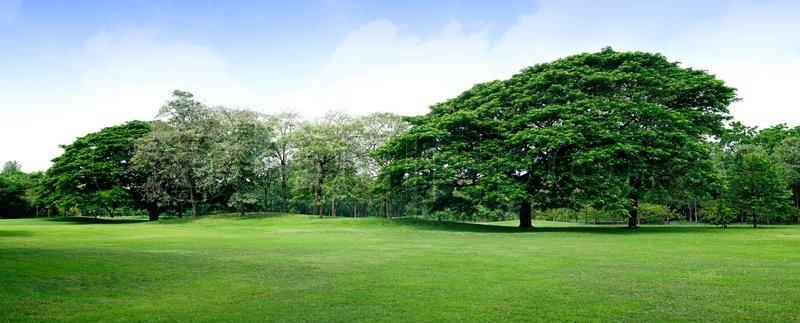 Панорама парк