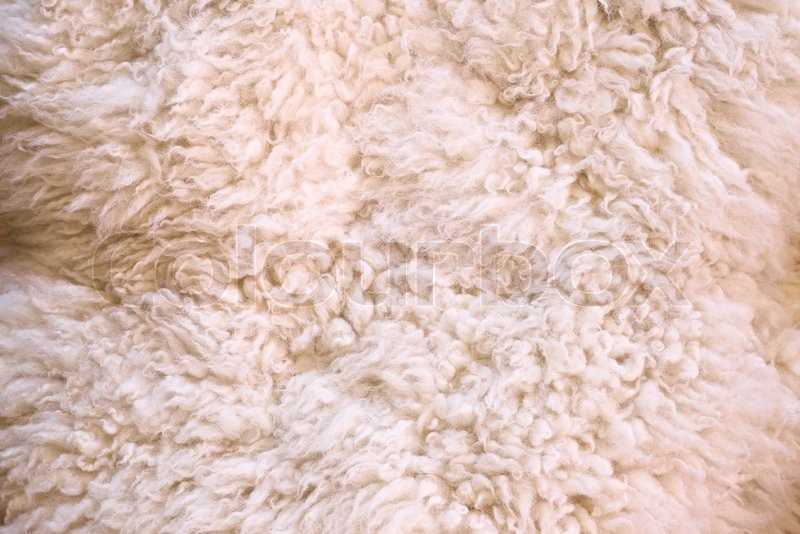 Photo Of White Furry Wool As Abstract Stock Photo