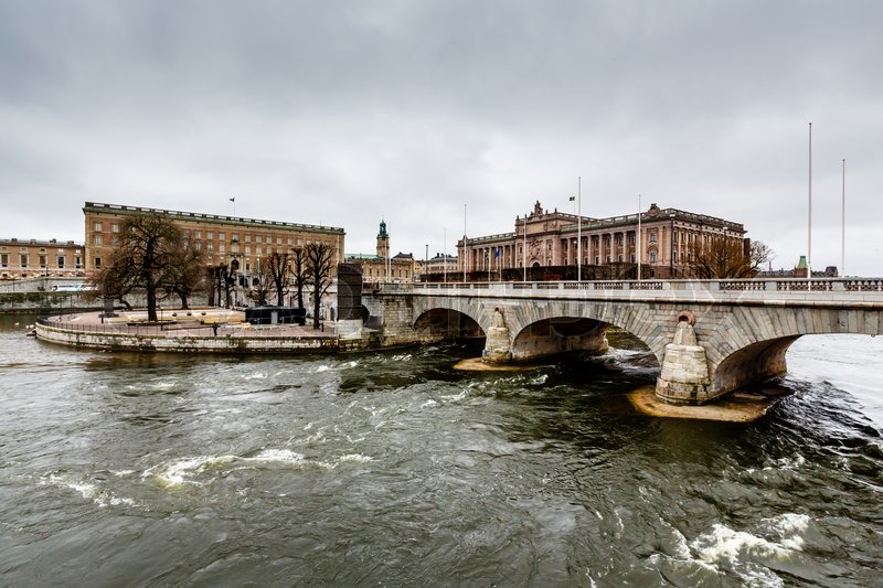 The Riksdag : a history of the Swedish Parliament (Book ...