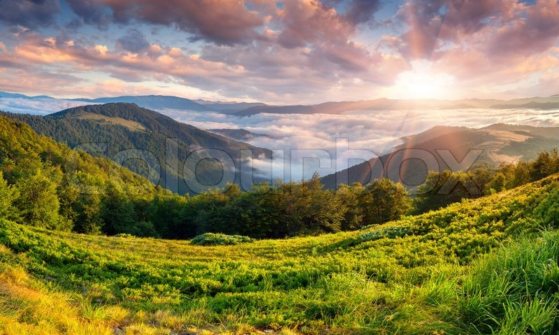 Beautiful summer landscape in the mountains. Sunrise, stock photo