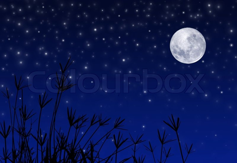 Night Sky with Stars and full Moon | Stock Photo | Colourbox