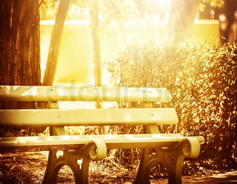 Beautiful wooden bench in the park, bright yellow sun ...