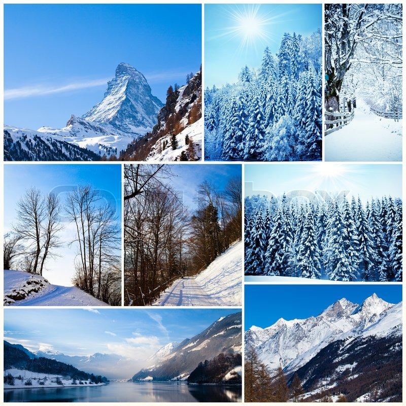Winter collage. collection of cold weather landscapes with mountains. Trees covered with snow, stock photo