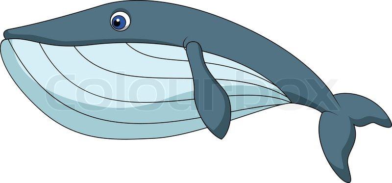 Whale Clip Art at Clker.com - vector clip art online ...