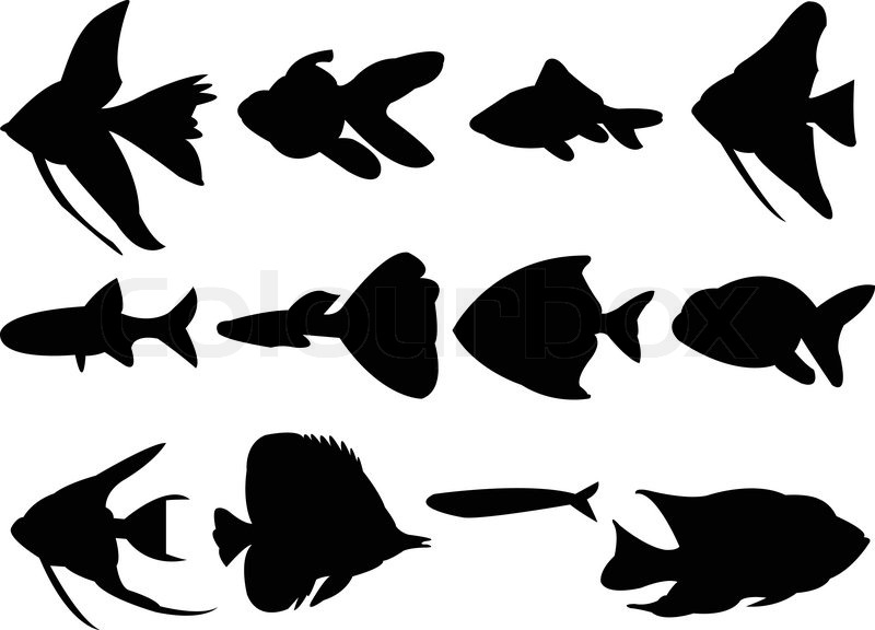 collection of aquarium fish silhouette vector stock vector rh colourbox com bass fish silhouette vector free bass fish silhouette vector free