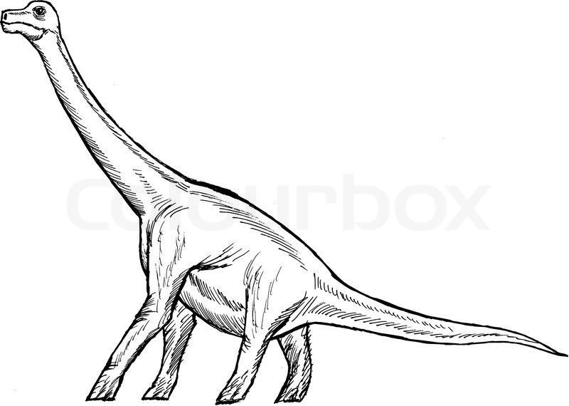 how to draw a brachiosaurus
