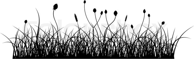 vector silhouette of grass on white stock vector colourbox vector silhouette of grass on white