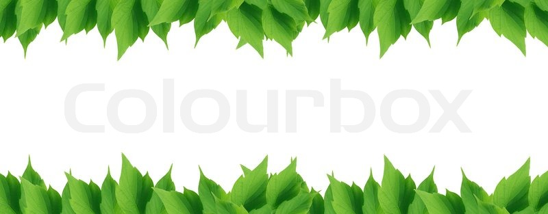 Green Leaves Border Image 6825134 on Plant Growth