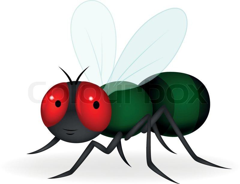 Vector Illustration Of Green Fly ...