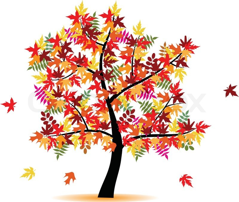 Stock vector of 'Four season tree with colorful leafs - autumn'