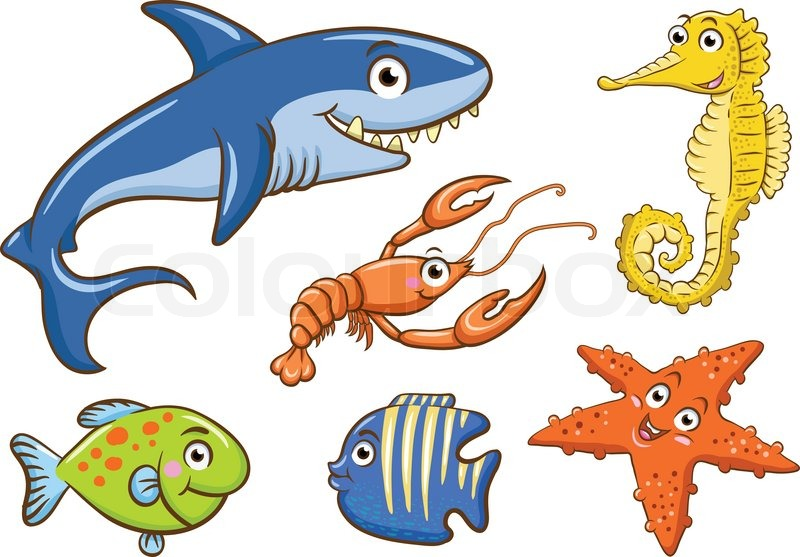 aquatic animals stock vector colourbox