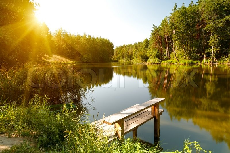 Summer landscape with forest lake, stock photo