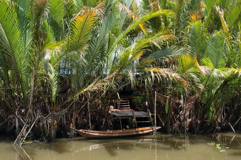 Af 'traditionelle thailandske hus med kokos træ nær floden thailand