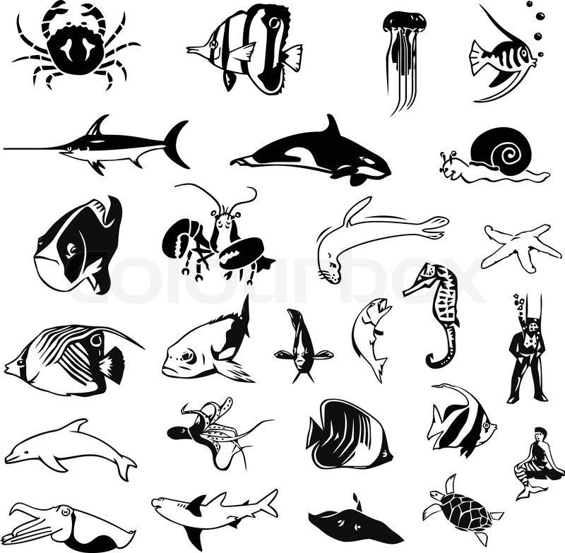 Aquatic turtle Aquarium Setup file free download fast