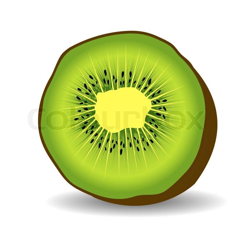 Kiwi fruit vector illu...