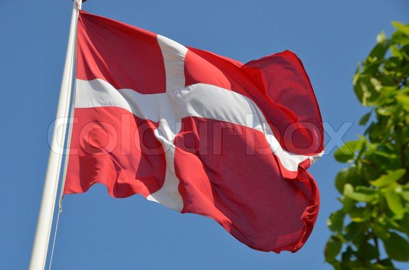 dansk flag fødselsdag