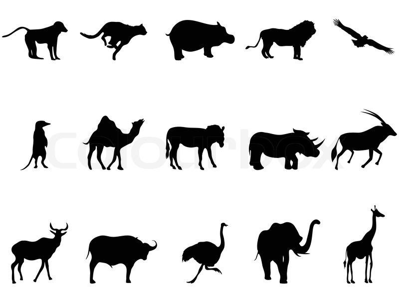 Afrika Tiere Silhouetten Vektorgrafik Colourbox