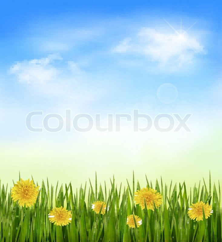 Blue Green Flower Nature Background With Green Grass And Flowers And Blue Sky Vector Vector