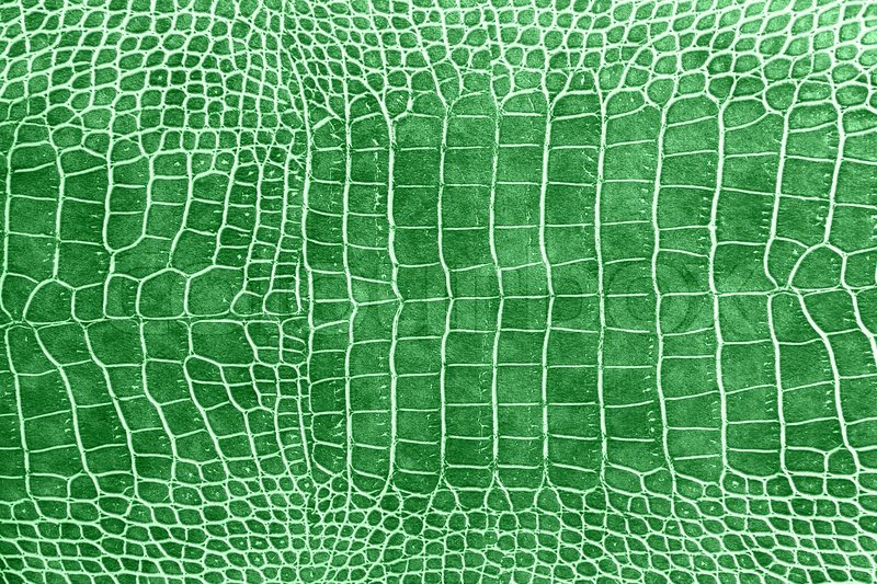 Dark Green Crocodile Skin Texture As A Wallpaper Stock