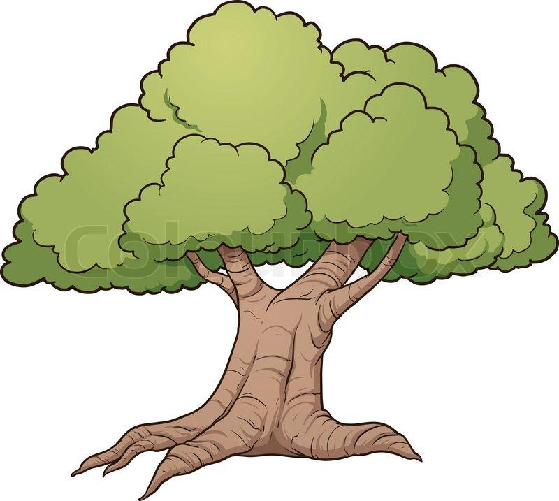 cartoon oak tree vector clip art illustration with simple gradients rh colourbox com oak tree vector logo oak tree vector logo