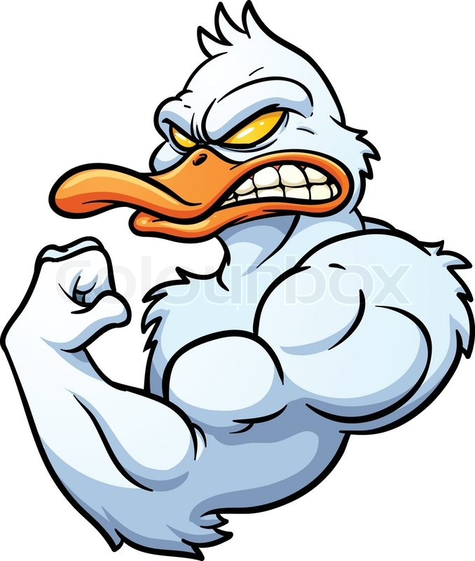 strong cartoon duck mascot vector illustration with simple