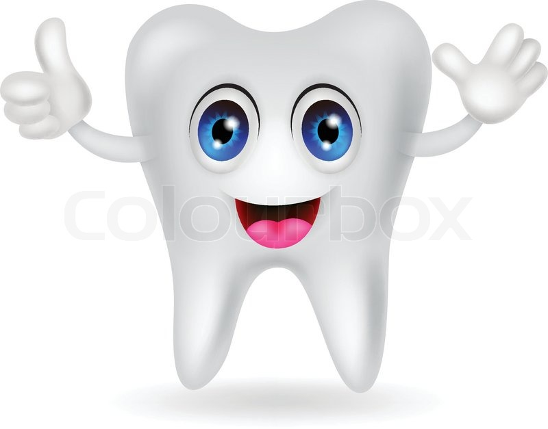 vector illustration of happy tooth cartoon stock vector