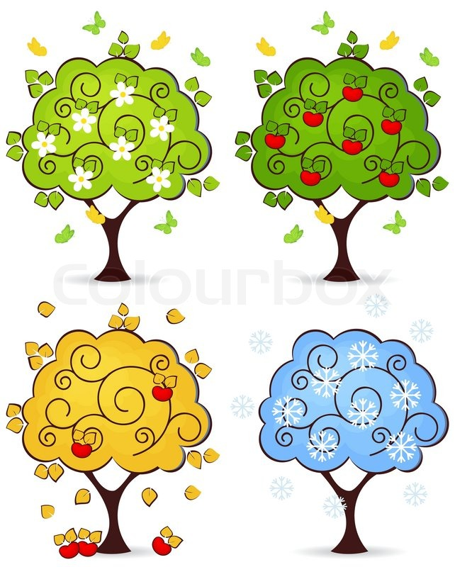 four seasons of spring summer autumn winter in a tree isolated on rh colourbox com