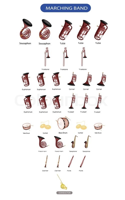 diagram of musical instrument for marching band stock. Black Bedroom Furniture Sets. Home Design Ideas